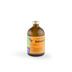 introvit-e-selen_-100_ml_vial_