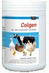 Coligen-Veterinary-Medicine-